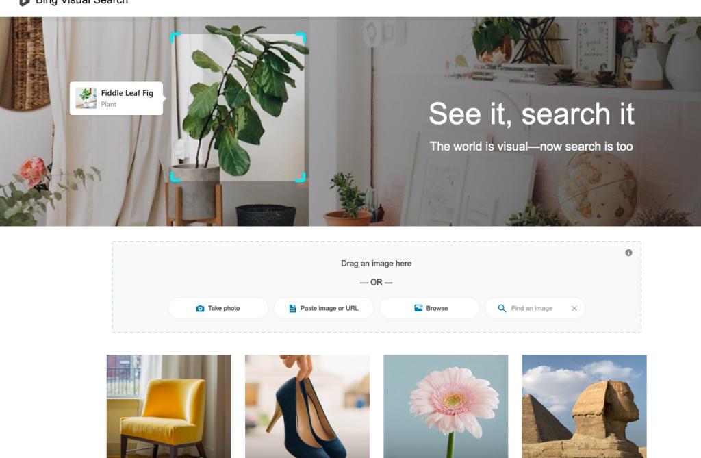 Bing SEO image search